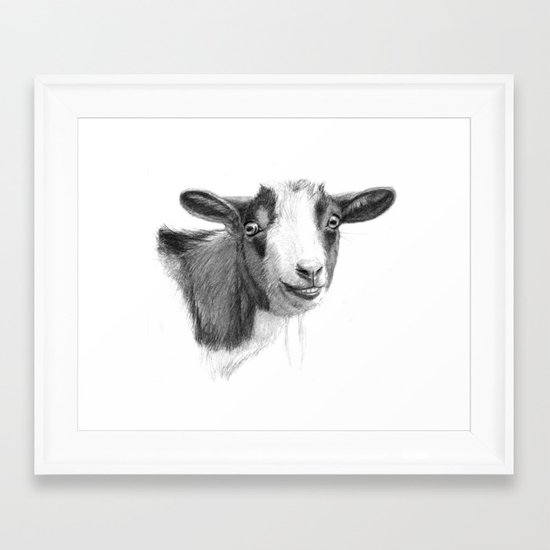 Curious goat sk098 Framed Art Print