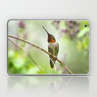 Laptop & iPad Skin featuring Hummingbird Passion by Christina Rollo