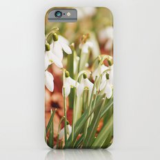 Snowdrops iPhone 6s Slim Case