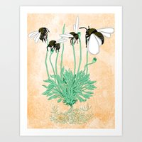 Plant With No Flowers Art Print