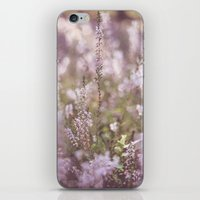 Calluna Vulgaris iPhone & iPod Skin