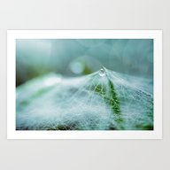 A Large Spider Web On Th… Art Print