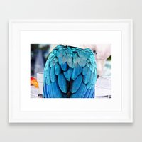 Parrot Life (2) Framed Art Print