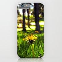 Park dandelion iPhone 6 Slim Case