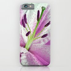 Pink Lily in Macro iPhone 6 Slim Case