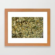 Suburban Jungle Framed Art Print