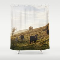 Cattle Grazing On Mounta… Shower Curtain