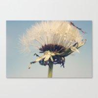 Skyduster Canvas Print