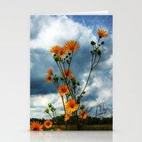 Prairie Stationery Cards