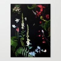 Foxgloves, Ferns And Lon… Canvas Print