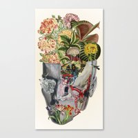 Mindfulness - Anatomical… Canvas Print