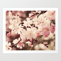 cherry blossom Art Prints featuring Cherry Blossom by Erin Johnson