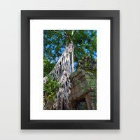 Temple Banyan Tree Framed Art Print