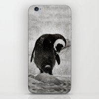 The Little Penguin That … iPhone & iPod Skin
