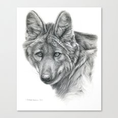 Maned Wolf G040 Canvas Print