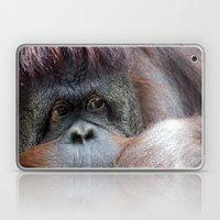Pongo Laptop & iPad Skin