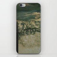 Big Bear iPhone & iPod Skin