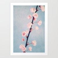 White Spring Art Print
