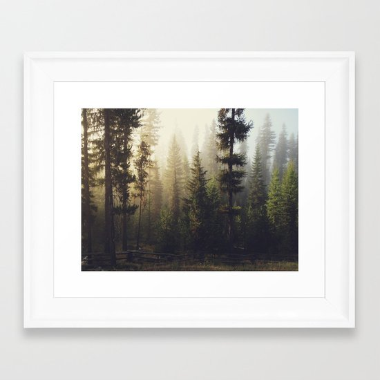 Sunrise Forest Framed Art Print