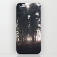 Forests Fog iPhone & iPod Skin
