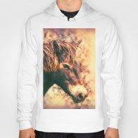 Painted Exmoor Pony Hoody