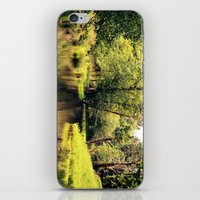 a tree by the river iPhone & iPod Skin
