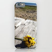 flower by the sea iPhone 6 Slim Case