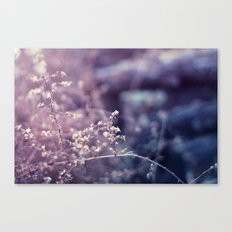 Blustered Canvas Print