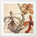 Hello Orchids Art Print