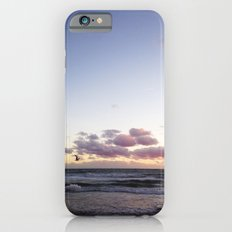Sunset and Seagull iPhone 6s Slim Case