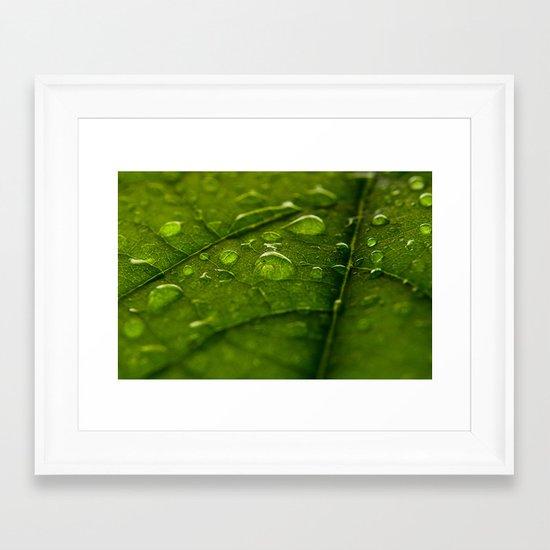 Green Bubbles 2 Framed Art Print