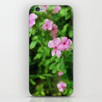 (piink)x(flowers) iPhone & iPod Skin