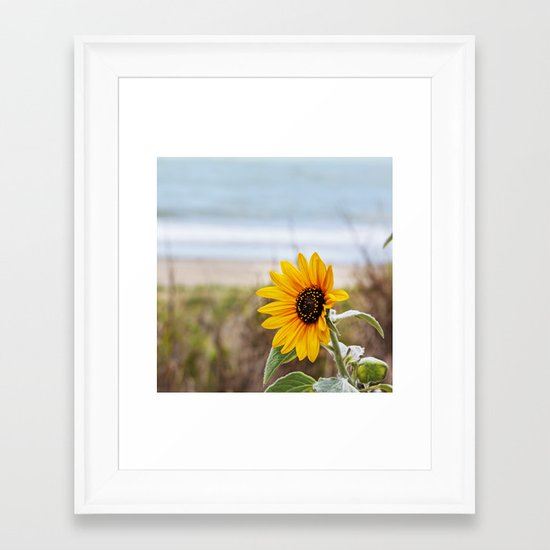 Sunflower near ocean Framed Art Print