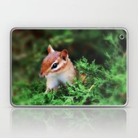 Chipmunk Laptop & iPad Skin