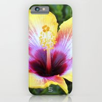 iPhone & iPod Case featuring Hibiscus I by TS Photography