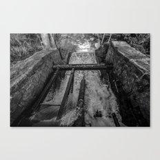Rush(Black & White) Canvas Print