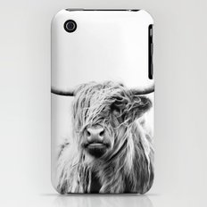 portrait of a highland cow iPhone (3g, 3gs) Slim Case