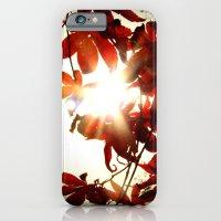 Autumn's Last Stand iPhone 6 Slim Case
