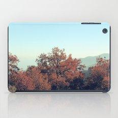 so far... iPad Case