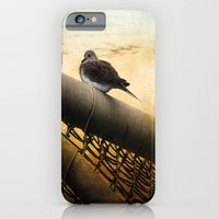 iPhone & iPod Case featuring Mourning Dove on Beach by Elaine C Manley