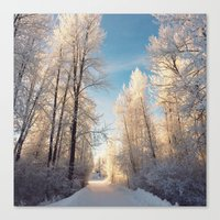 Let There Be Light - Fro… Canvas Print