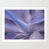Shades Of Lilac Agave At… Art Print