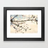 Flor del almendro. Framed Art Print