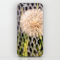 Oversized Puff - Ready T… iPhone & iPod Skin
