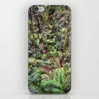 Rainforest Jungle iPhone & iPod Skin