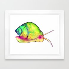 Watercolor Snail Framed Art Print