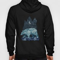 The Great Bear Hoody