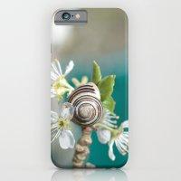 sea snail iPhone 6 Slim Case