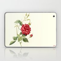 Botanical study - Rose Laptop & iPad Skin