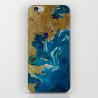 Lakeshore Limited iPhone & iPod Skin